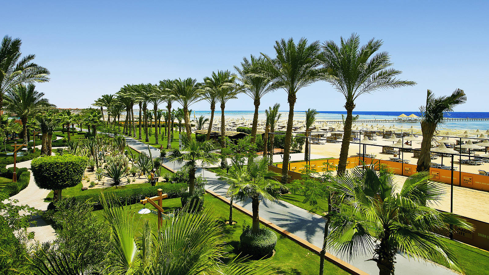 an introduction to the life of sharm el sheikh The beaches of sharm el sheikh is considered one of the best leisure options but the first line of hotels managed to do this before the introduction of these rules.